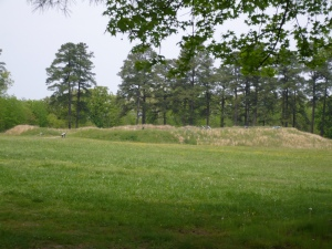 This photo was taken in 2008 at Petersburg National Battlefield at Battery #5.  NOTE: This not Rive's Salient.  This picture is included simply to show Petersburg Battlefield as it appears today.