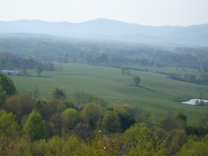 Shenandoah Valley area
