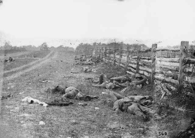 Fallen Confederate soldiers along the Hagerstown Road, Gettysburg