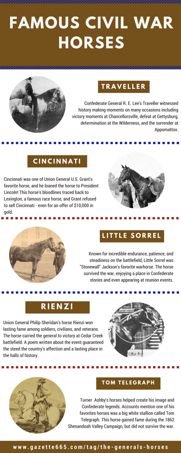 Civil War Generals Horses